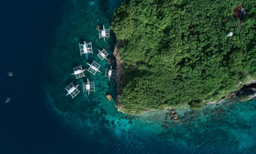 Cebu Seaview Dive Resort - Pescador Island